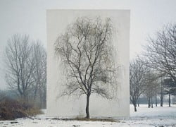 Myoung Ho Lee — Tree #3